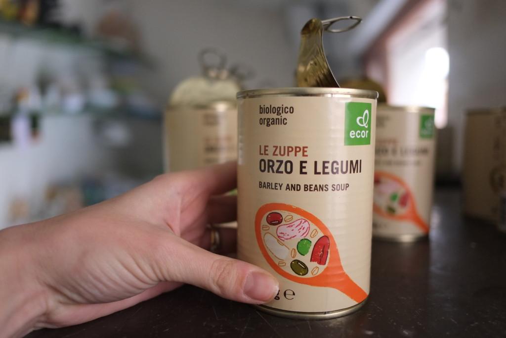 fondi di carciofo installazione ricerca cibo biologico